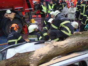 Vor lauter Baum kein Unfallopfer erreichbar.